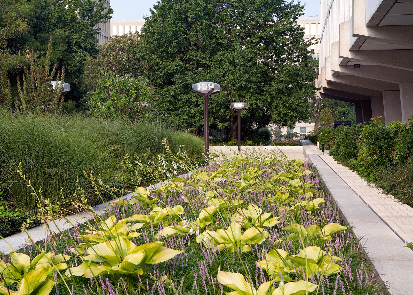 Virginia Avenue Gardens 7
