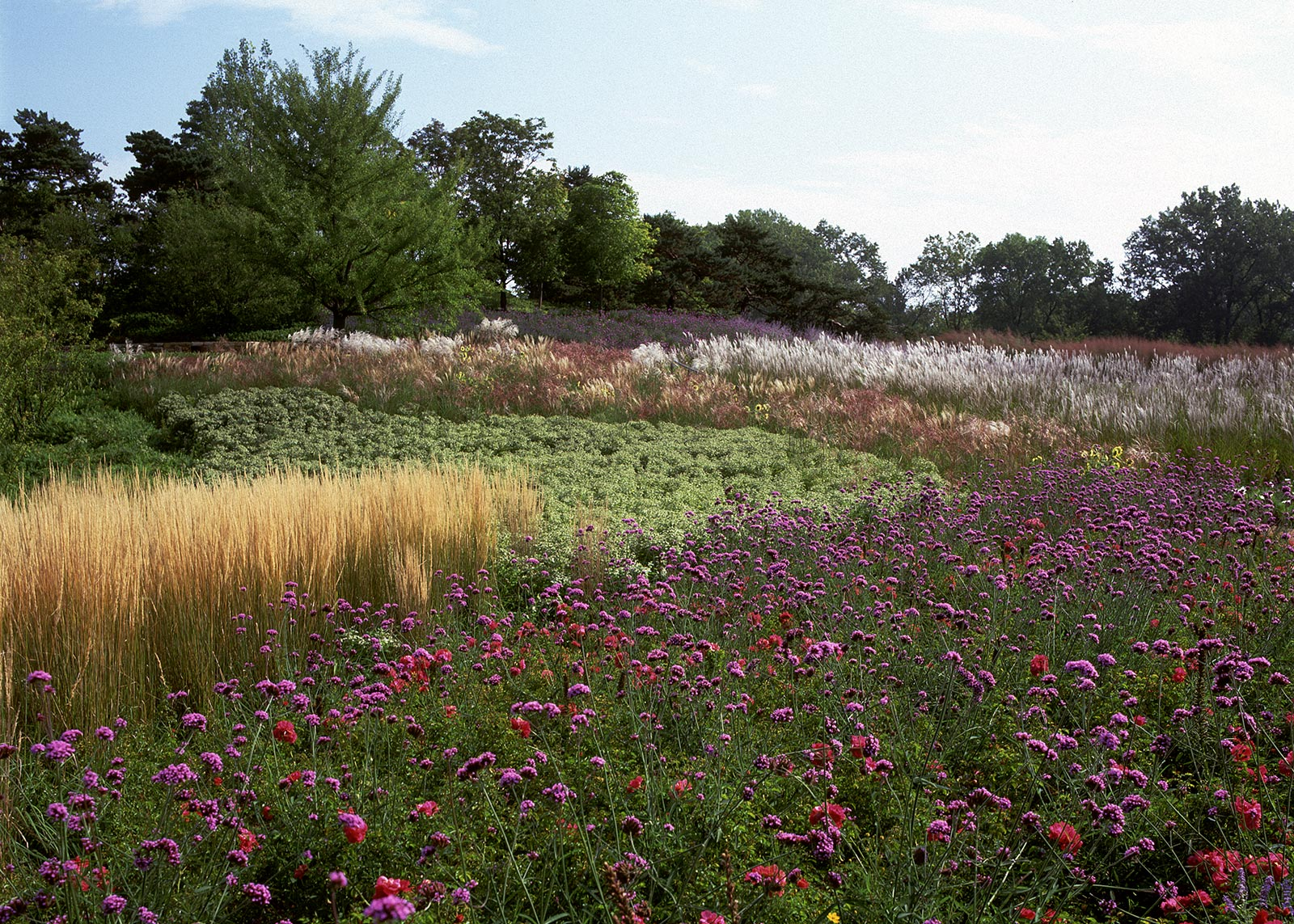 Gardens of the Great Basin 2