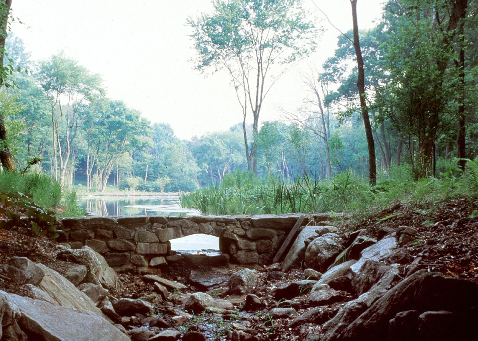 Rock Rim Ponds