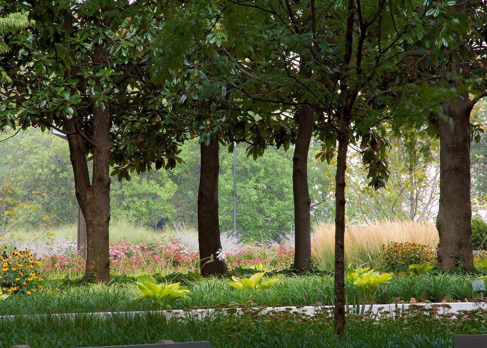 Virginia Avenue Gardens 6