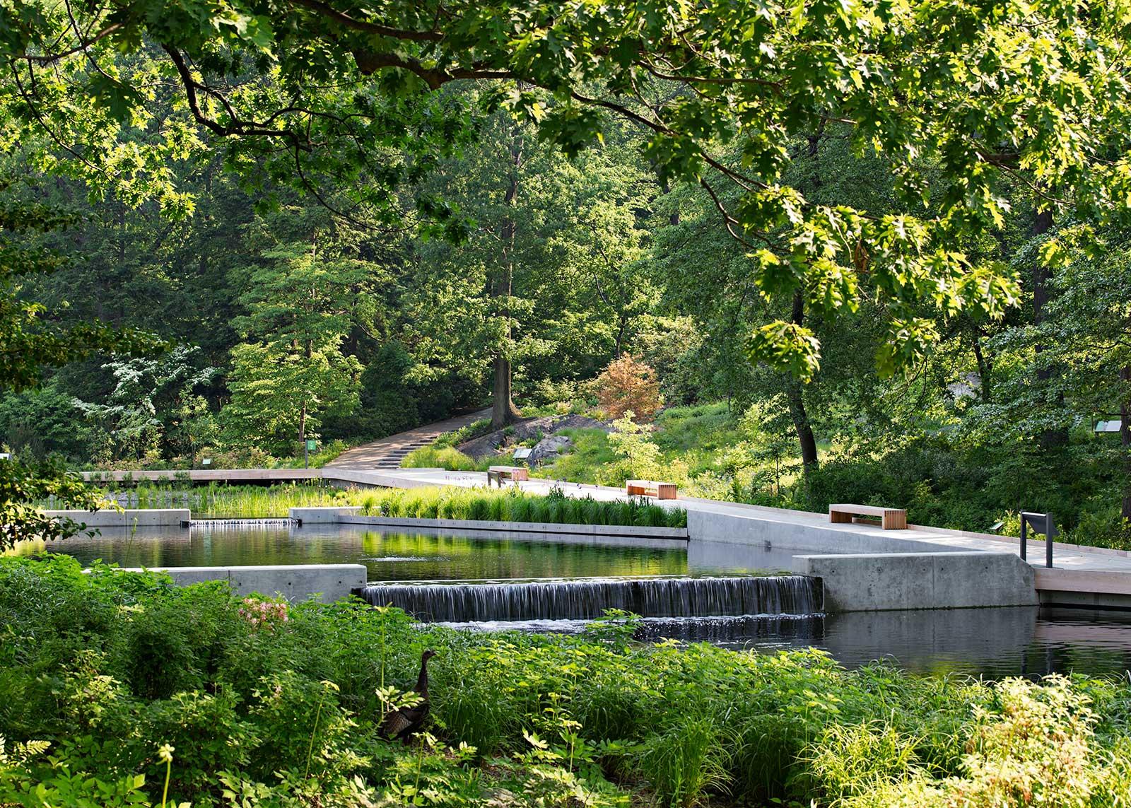 The Native Plant Garden Ny Ovs Landscape Architecture