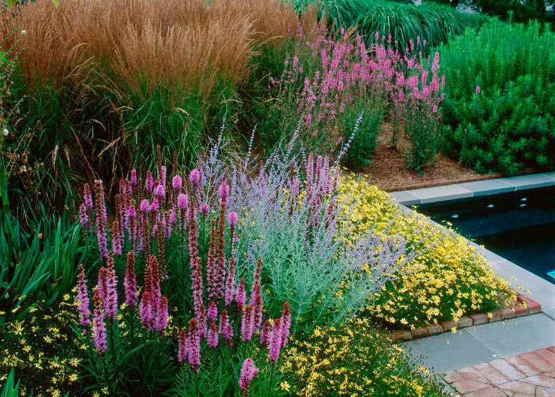 The Arf Hamptons Garden Tour 25th Anniversary Ovs Landscape