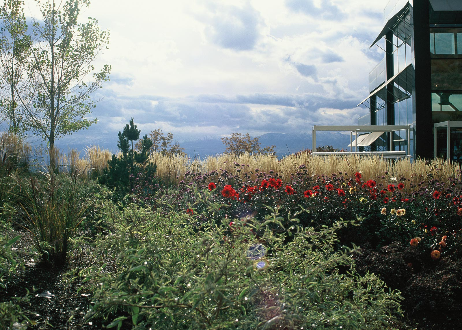 Four Season Garden at Red Butte