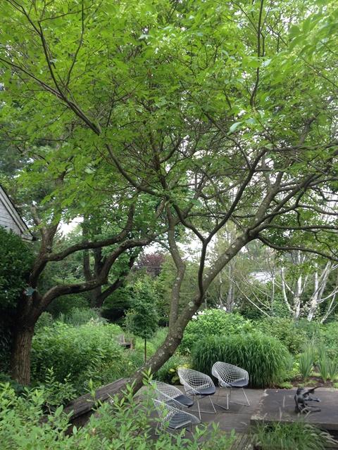 Vollmer Garden