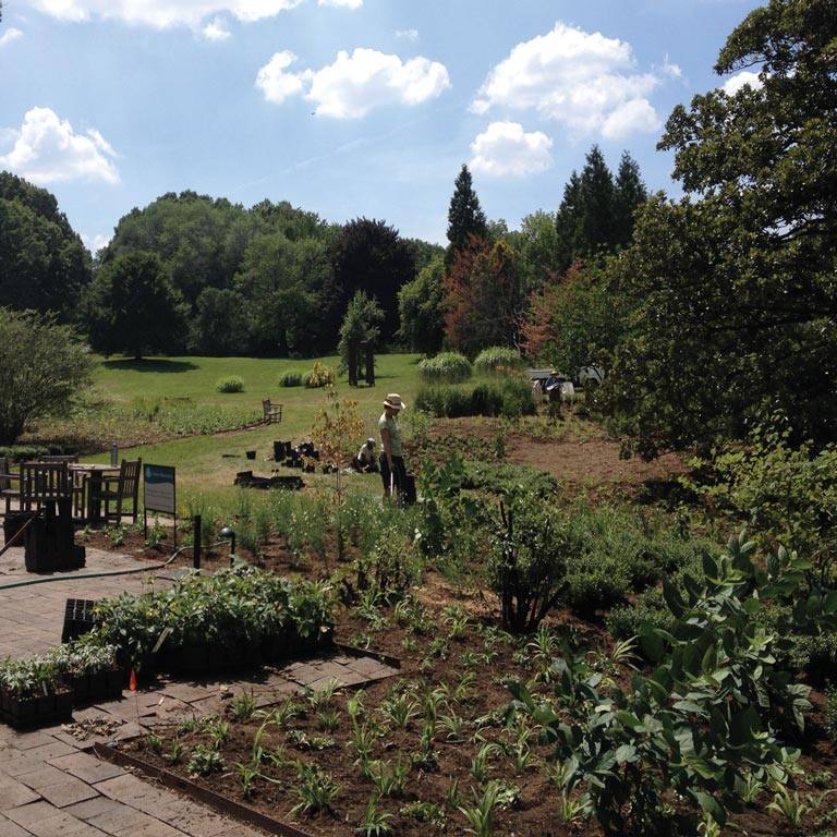 The new plants were laid out and planted by volunteers and staff. © OvS