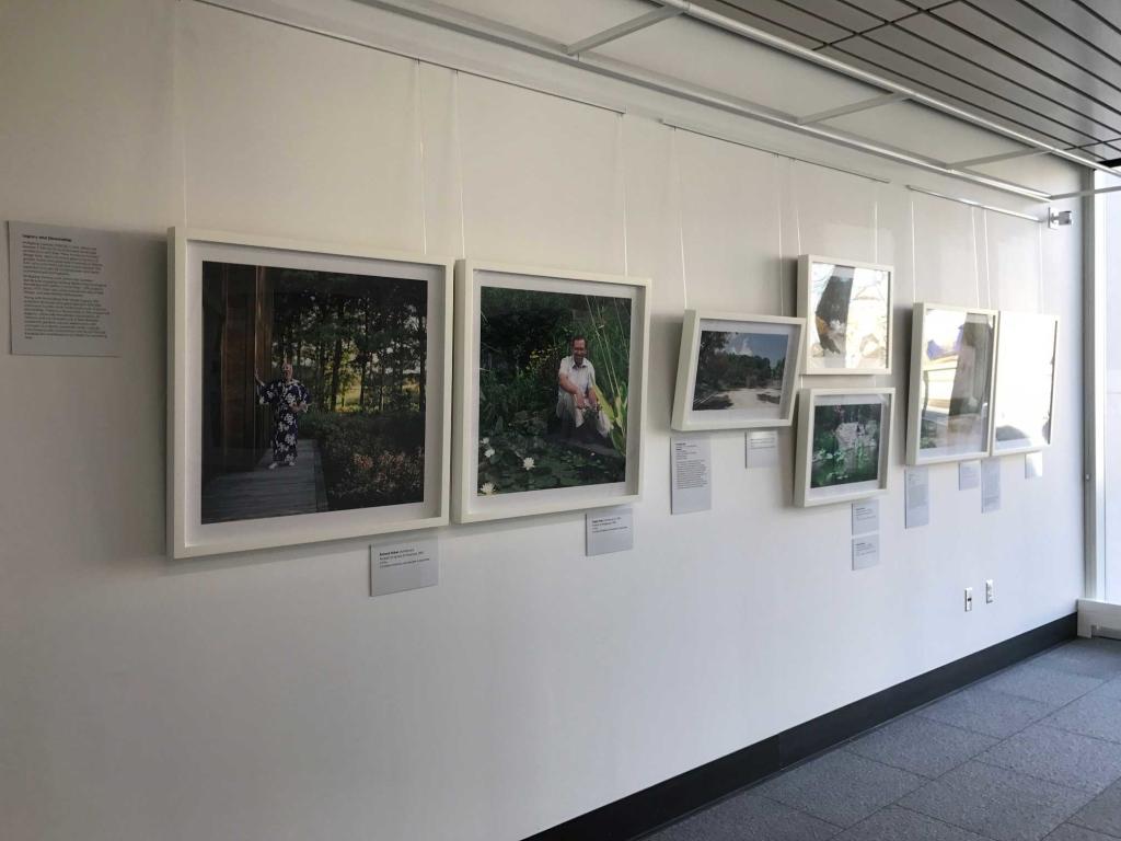 The New American Garden exhibition