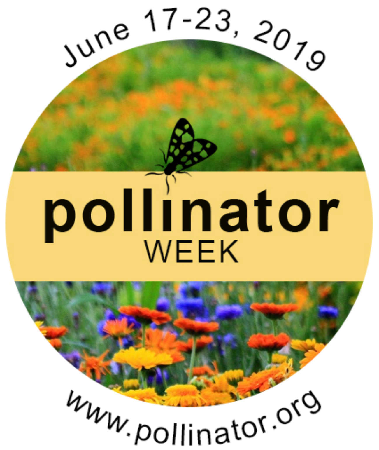 National Pollinator Week